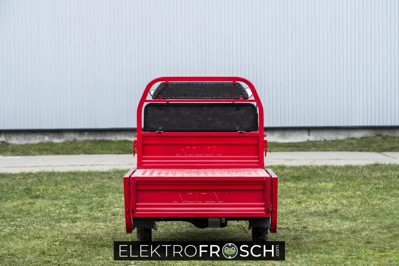 Elektrofrosch Basis