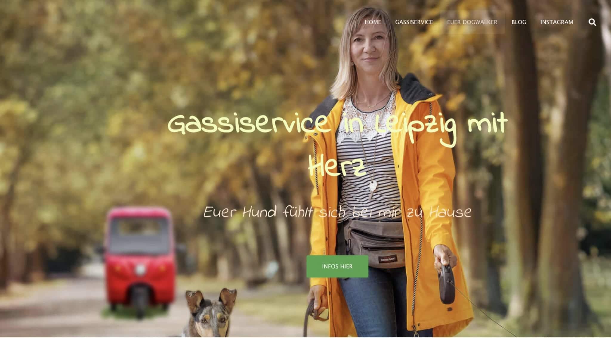 gassi Service Elektrofrosch Pro 1 - Videos