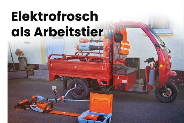 Elektrofrosch Berlin